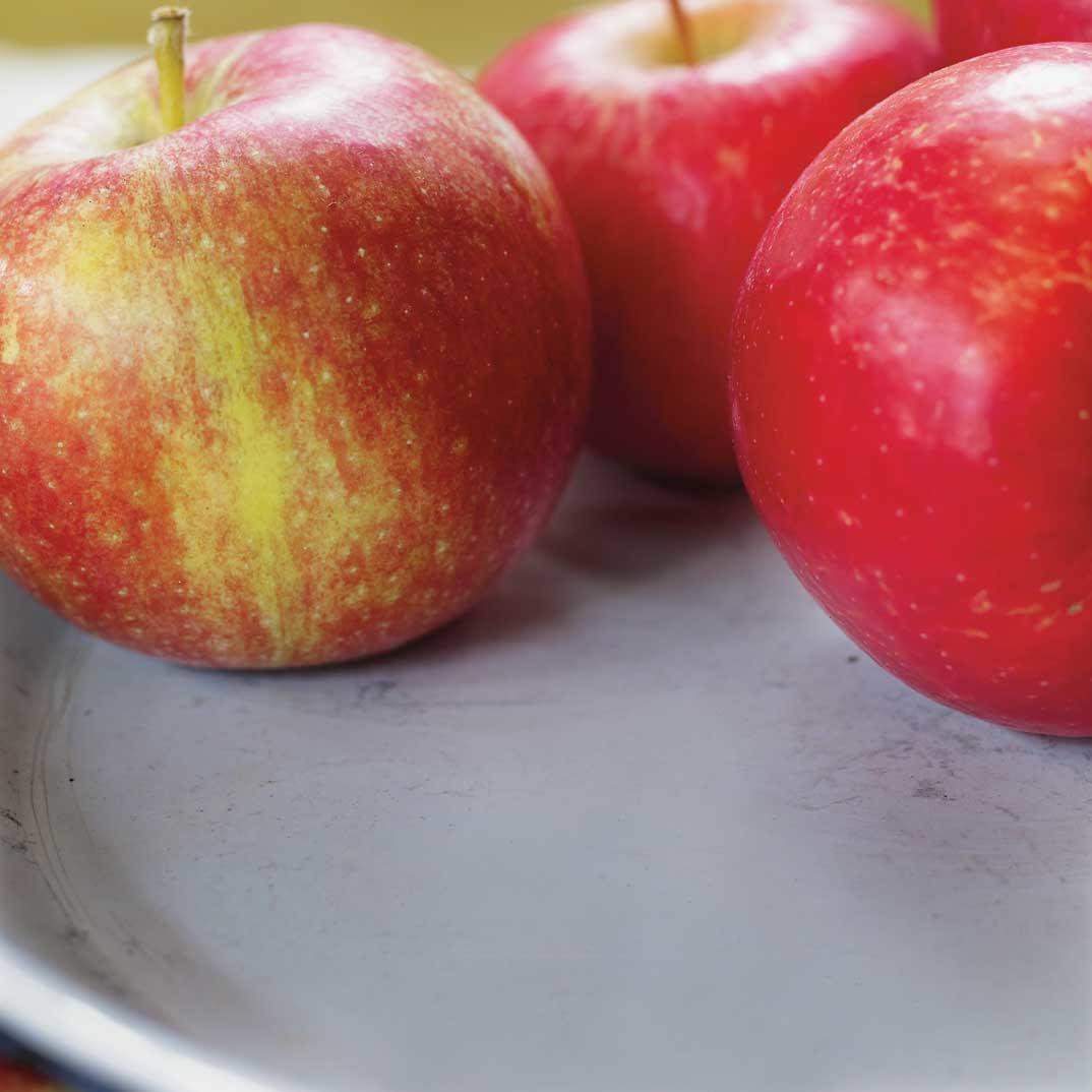Apple and Maple Syrup Pork Roast