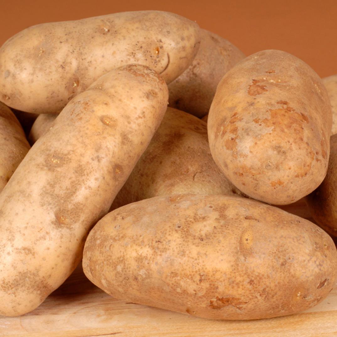 Baker's Potatoes