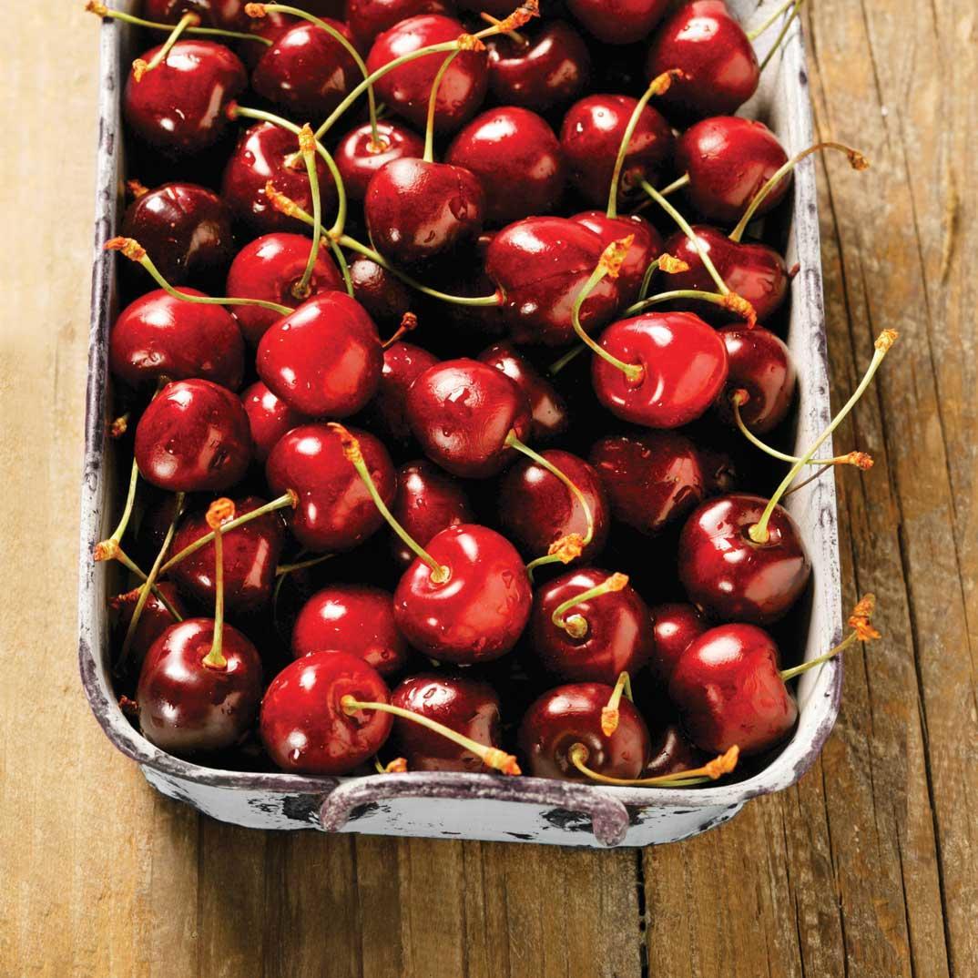 Candied Morello Cherries